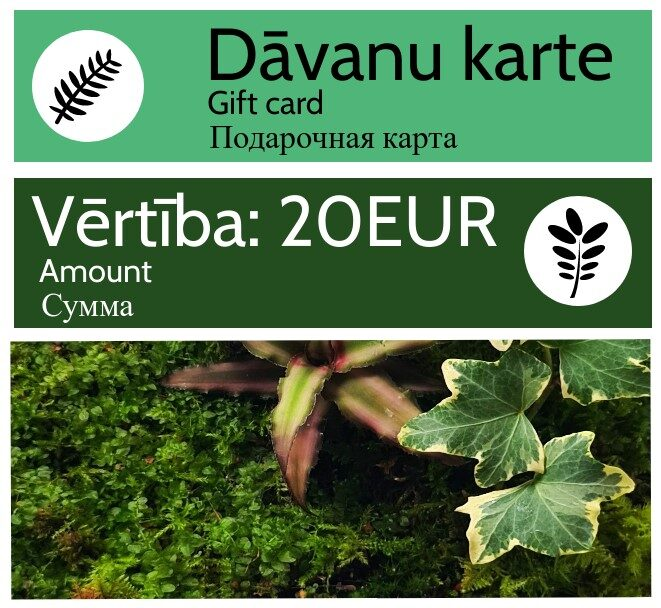Dāvanu karte - 20 EUR