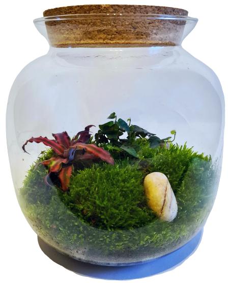 Elfu pļava (25cm x 24.5cm)