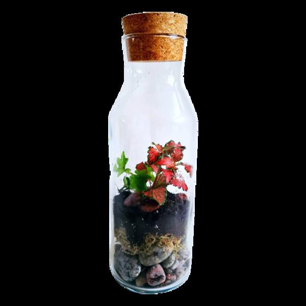 Цветочная бутылка (28cm x 9cm)