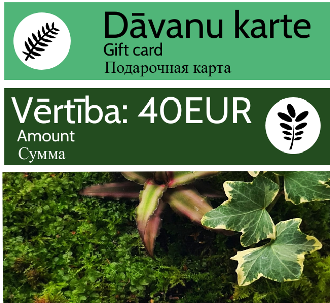 Dāvanu karte - 40 EUR